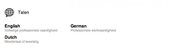 linkedin profiel extra talen 580x172 Breng je LinkedIn Profiel tot leven