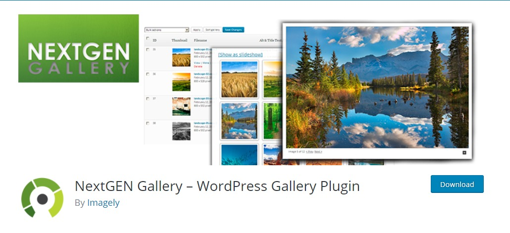 Next-Gen Gallery plugin